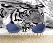 Custom photo wallpaper tiger black and white animal mural entrance bedroom living room sofa television background wall wallpaper free shipping acropolis retro black and white photo mural wallpaper study room bedroom living room wallpaper