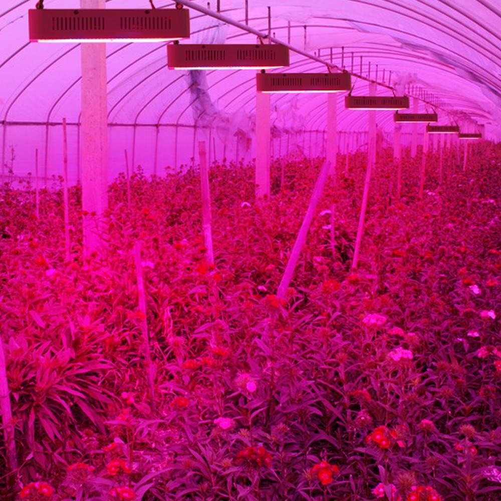 Full Spectrum LED Plant Grow Lights 53
