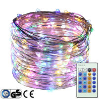 300Leds Silver Wire Lights 98Ft 30M String Lights For Christmas Light Festival Decoration Lamp Dimmable LED