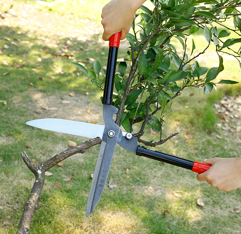 loppers fruit tree pruning shears garden tools pruners garden shears gardening secateurs grafting tools in pruning tools from tools on aliexpresscom - Garden Shears