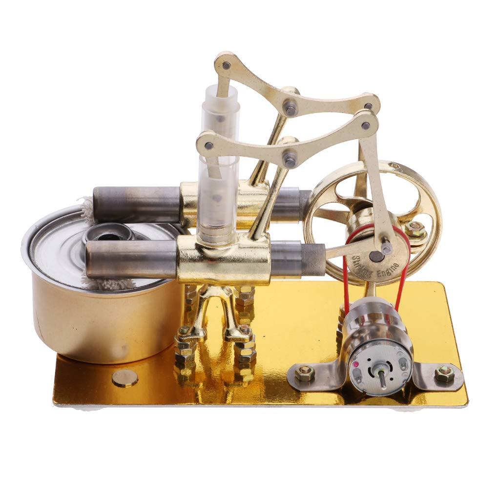 Air chaud 2 cylindres Stirling moteur générateur de vapeur modèle physique expérience Science apprentissage jouets éducatifs cadeau pour les enfants