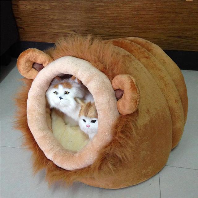 panier chat hiver