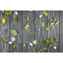 Laeacco Easter Day Spring Green Leaves Flowers Wooden Board Baby Portrait Scene Photo Backdrop Background For Studio