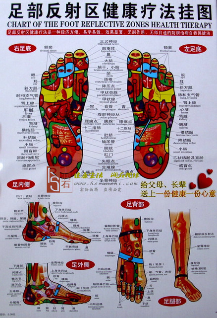 Health H18 Wall Chart Of The Foot Reflection Zone Health Therapy