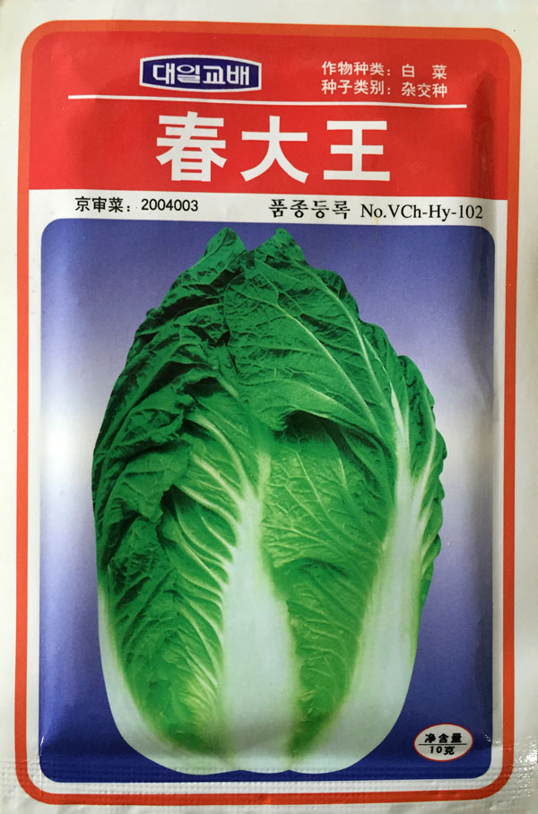 Hybrid F1 Vegetable seeds Spring King Cabbage seeds imported cannonball shape cabbage Se ...