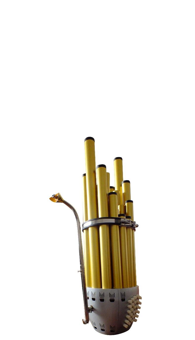 2017Chinesische VolksinstrumenteWang Sheng Musical Instrument - Musikinstrumente - Foto 2