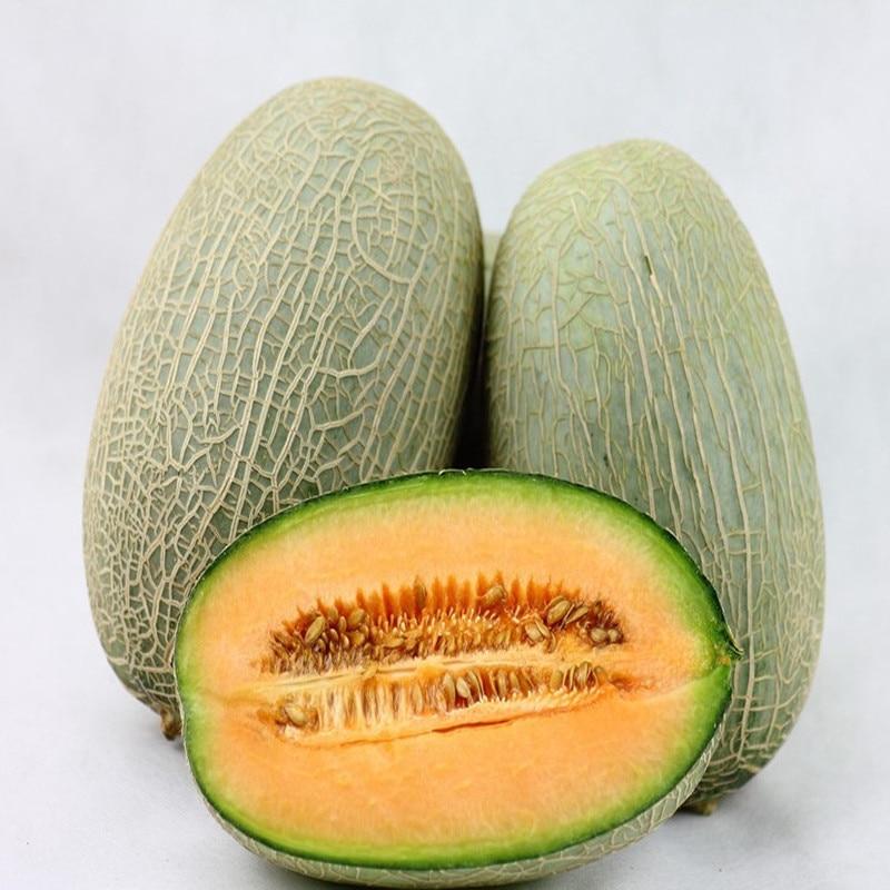 diabetes melones galia