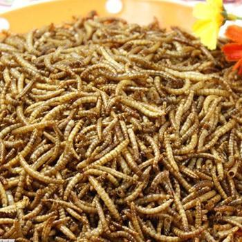 free shipping Dried mealworms Tenebrio hamster arowana fish feed food turtle food myna bird food