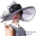 Джун Молодой Летняя Мода Органзы Hat 100% Органзы Hat Щепка черный Цвет Широкими Полями Вс Hat Свадьба Носить Леди Fedoras шляпы