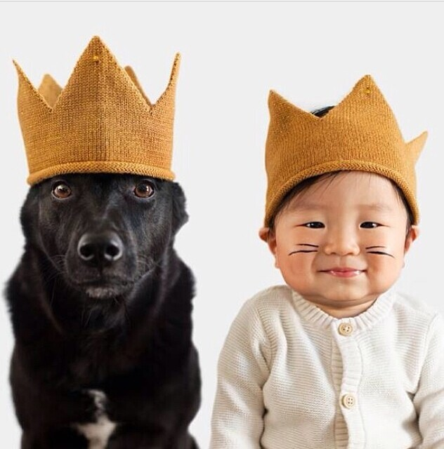 Baby set Kinds of Kids Crown Cap Big hero Girl Children knitted Pet dog Photography Props Hip-Hop Newborn Birthday