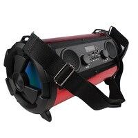 ZIENSTAR 16W Wireless Bluetooth Sports Speaker Portable Outdoor Subwoofer Support TF USB Card FM Radio
