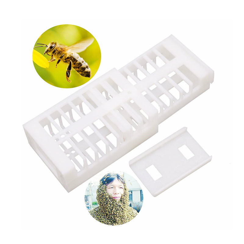100 Pcs 48.5*30*17mm Removable Bee Cage Beekeeping Equipment Beekeeping Supplies Of High-quality White Plastic Bee Queen Cage