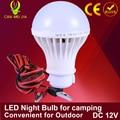 1 pcs Lâmpadas LED 3 W Lâmpada Para Casa Camping Caça Luz de Emergência Ao Ar Livre para DC 12 Volts 5 W Luz 7 W Lâmpada Mercado Noite Lâmpada de Pesca 9 W 15 W