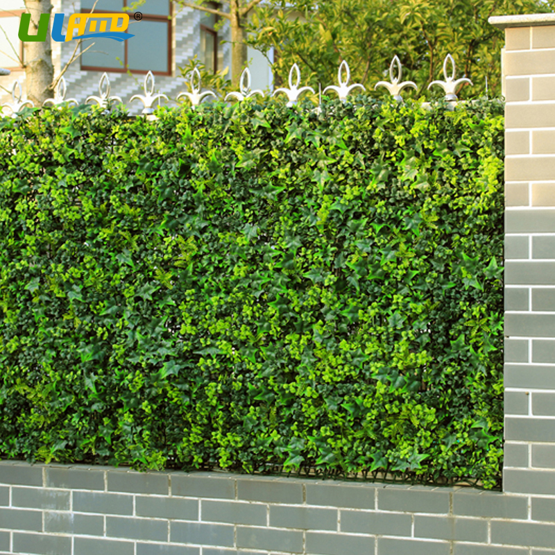Popular Garden Hedge Buy Cheap Garden Hedge Lots From