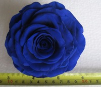 Big Preserved 9-10cm Rose Flower Bud Head For Wedding Party Holiday Birthday Velentine's Day Gift Favor