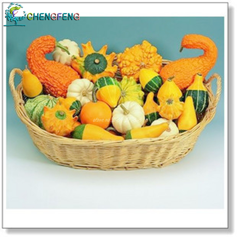 I want more varieties of pumpkin seeds germinate toys ornamental pumpkin-shaped fruit peculiar diverse 10 / pack Free Shipping