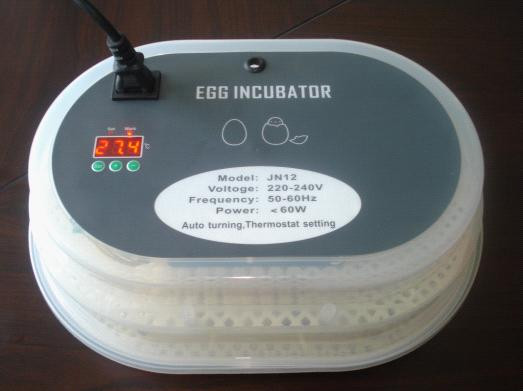 New Digital Automatic Poutry Egg Incubaor 12 Eggs Duck Chicken Goose Eggs Incubator 15 19 25 37 heads droplight clear bubble ball goose egg birds eggs duck egg double deck glass ball transparent pendant light