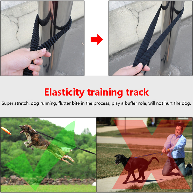 Draft – Dog Tracking Lead Non-slip Elastic Pet Long Leash Strap Bungee Leashes With Handle For Daily Training Running Walking 3m 5m