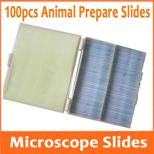 100pcs Optical Glass Animal Professional Student Lab Microscope Specimen Bio-microscope Slides for Educational School professional student biological microscope up and down leds microscope metal structure optical glass lenses wide angle eyepiece