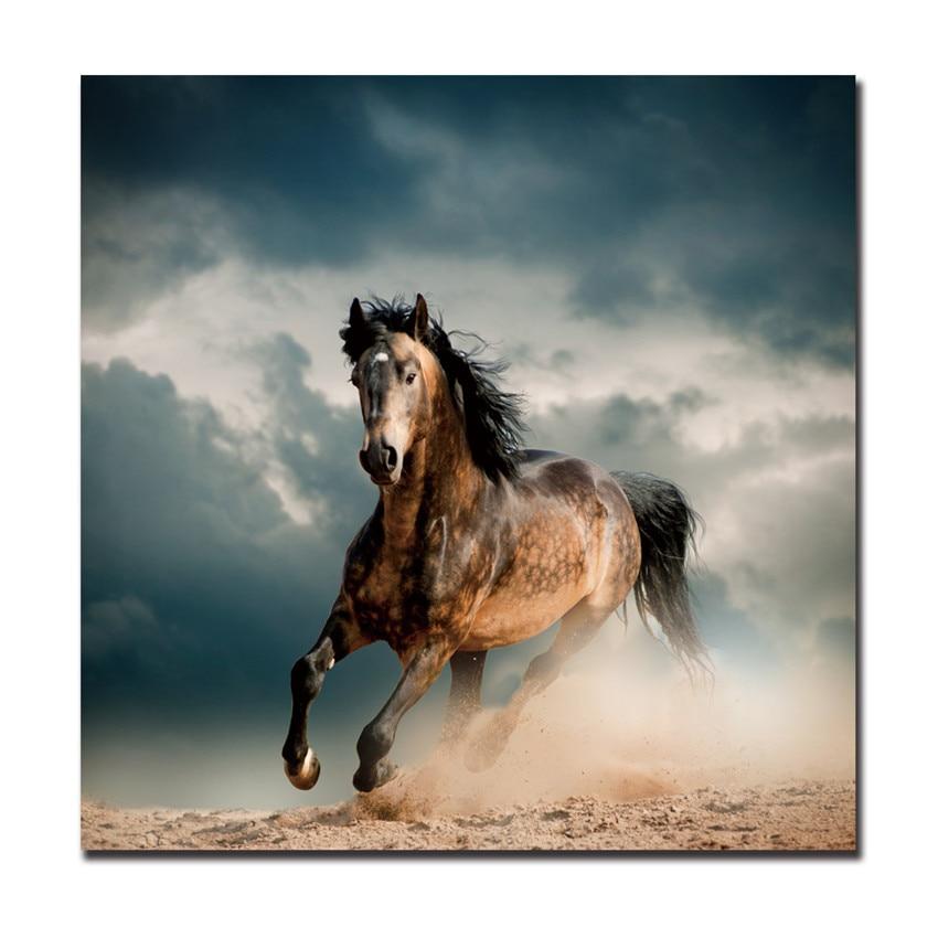 running horses posters reviews