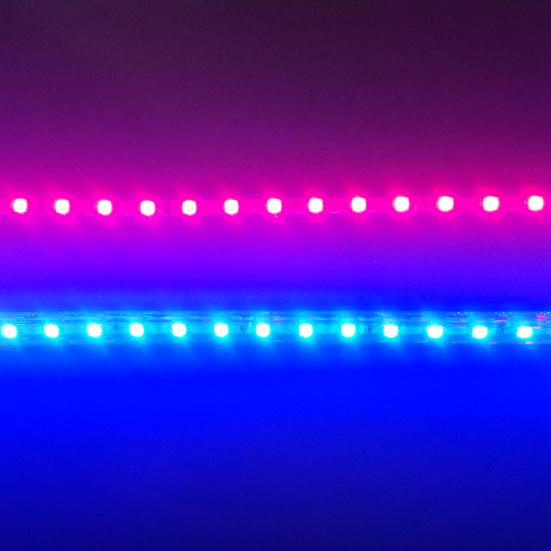 (1 m rød + 1 m blå) LED Grow Light Strip 220V, til frøplanter Blomster Grøntsager Planter til vækst i Grow Telt og akvarium
