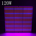 120W SMD 1131Red 234Blue Hydroponics Plant Lighting 85-265V LED Grow Light for flowers and vegetable free shipping