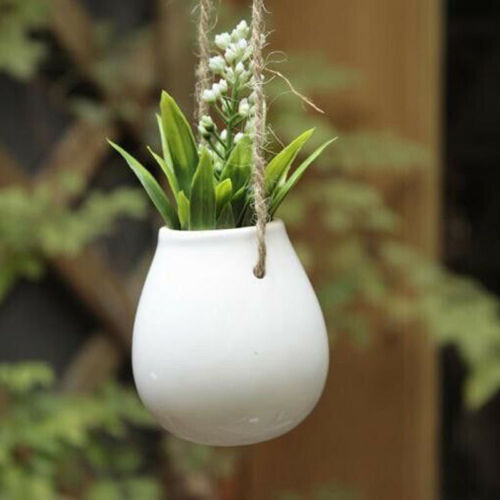 Image 5 - 2019 Newest Hot Ceramic Plant Hanging Basket Planter Flower Pot Bulb Vase Home Decor + Jute Rope-in Flower Pots & Planters from Home & Garden