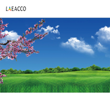 Laeacco Blue Sky Grassland Flowers Spring Photography Backgrounds Customized Photographic Backdrops For Photo Studio
