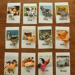 Montessori Brinquedos Infantis Animais De Capoeira Cartões de Aprendizagem Brinquedos Educativos para Crianças Juguetes Cartão Flash YJ1244H