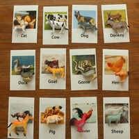 Montessori brinquedos infantis aves domésticas animais cartões aprendizagem brinquedos educativos para crianças cartão flash juguetes brinquedos yj1244h