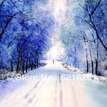 Charming snow scene 8'x8′ CP Computer-painted Scenic Photography Background Photo Studio Backdrop DT-12-88