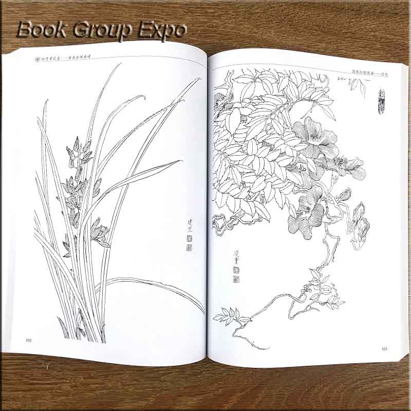 Image 5 - Chinese painting line drawing book Color pencil Flower Birds and insect coloring book for adults children-in Books from Office & School Supplies