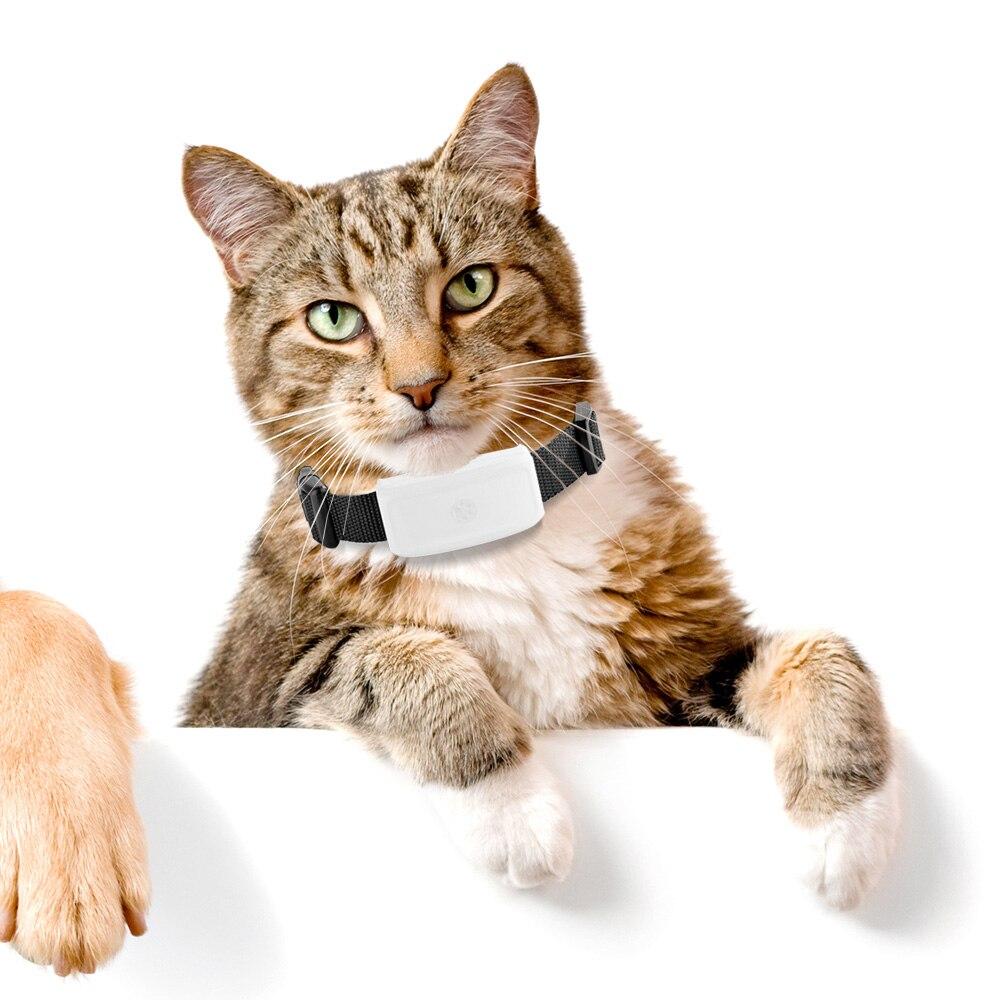 Mini Pet Dog Cat Animal Wifi GPS Tracker locator tkstar tk911 the upgrade tk909 GPS WIFI