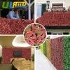 Sythenic Red Laurel Leaf Mat 10 X20 Artificial Boxwood Hedges Panels Plastic Plant Fence For Garden