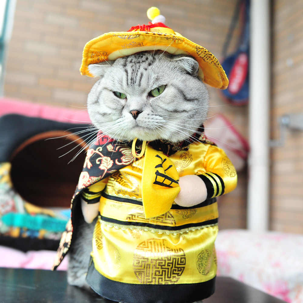 Funny Chinese Princess Cosplay Clothes For Cats Halloween Costume For Dogs  Xmas Suit Cat Clothing Dog Outfit Pet Apparel