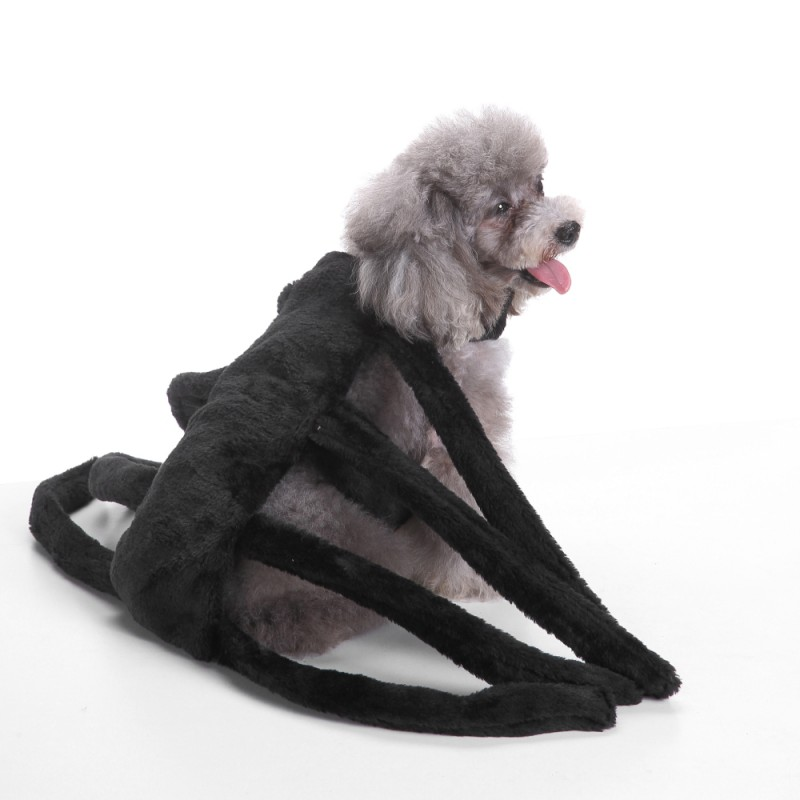 Spider Dog Costume 5