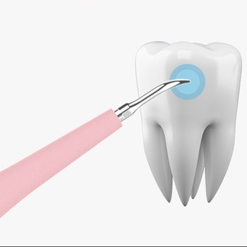 Przenośne elektryczne Sonic skaler dentystyczny ząb nazębny Remover przebarwienia na zębach tatar narzędzie dentysta wybielanie zębów szczoteczka USB tanie i dobre opinie Dorosłych 190*30 5*20 5mm Elektryczne szczoteczki do zębów Fala akustyczna Portable Electric Sonic Dental Scaler Plastic + Metal