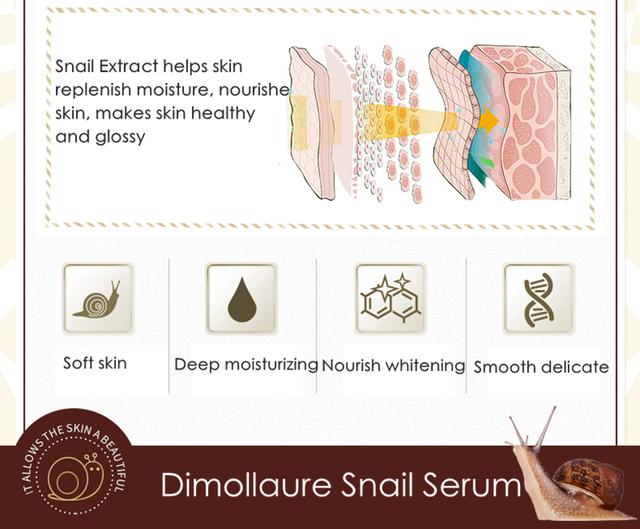 Dimollaure Snail Serum