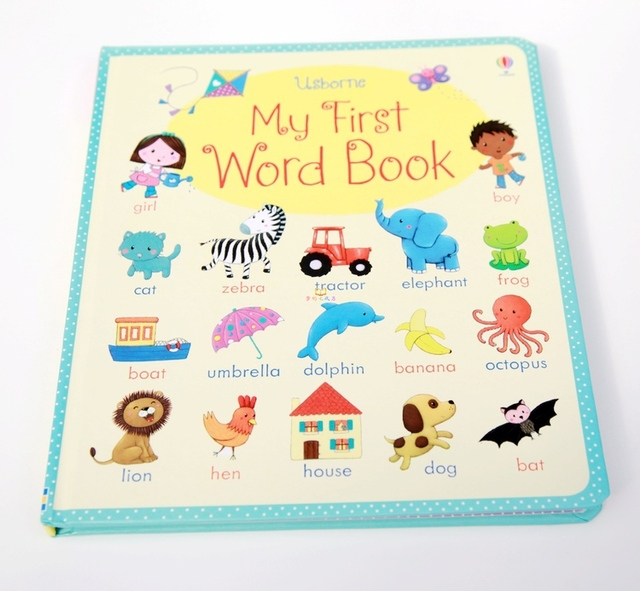 US $15 97 6% OFF|20 pages 23*26cm, 2 8 years old Free Shipping! famous  board book, the first English dictionary for baby, My first word book-in  Books