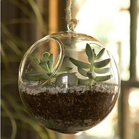Free Shipping Different Size Glass Terrarium Vase Diameter =8cm 10cm 12cm 15cm Glass ball with a little higher open wedding prop