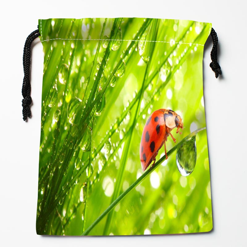 New Custom Ladybug Bags Custom Drawstring Bags Printed Gift Bags 27x35cm Compression Type Bags