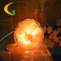 Himalayan salt crystal lamp dimmable night light table lamp bedroom bedside lamp European table lamp