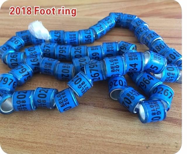 2018 Blue Pigeon rings BELG Bird ring