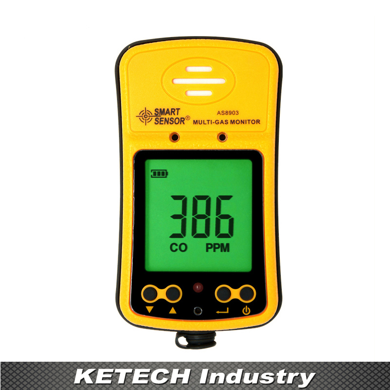 AS8903 Handheld 2 in 1 Hydrothion/H2S ,Carbon Monoxide/CO Gas Detector Monitor