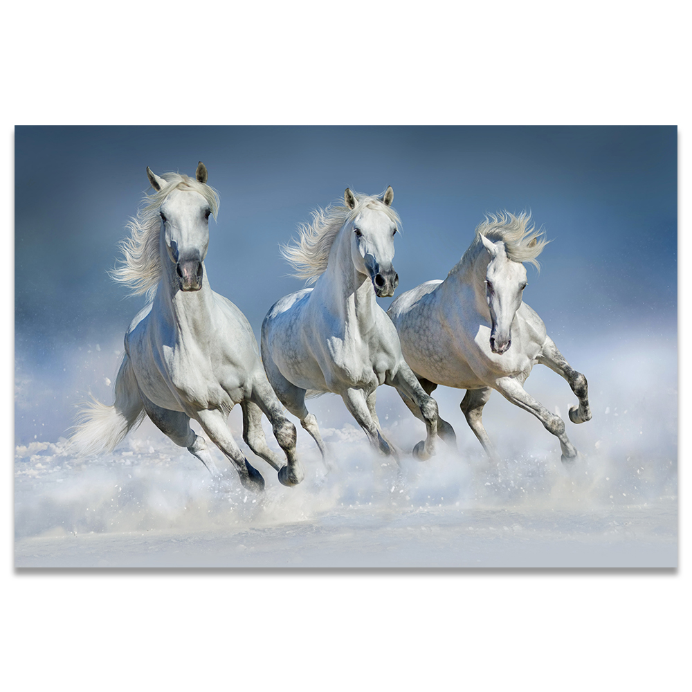 Wall Art Canvas Picture Print Running Horses