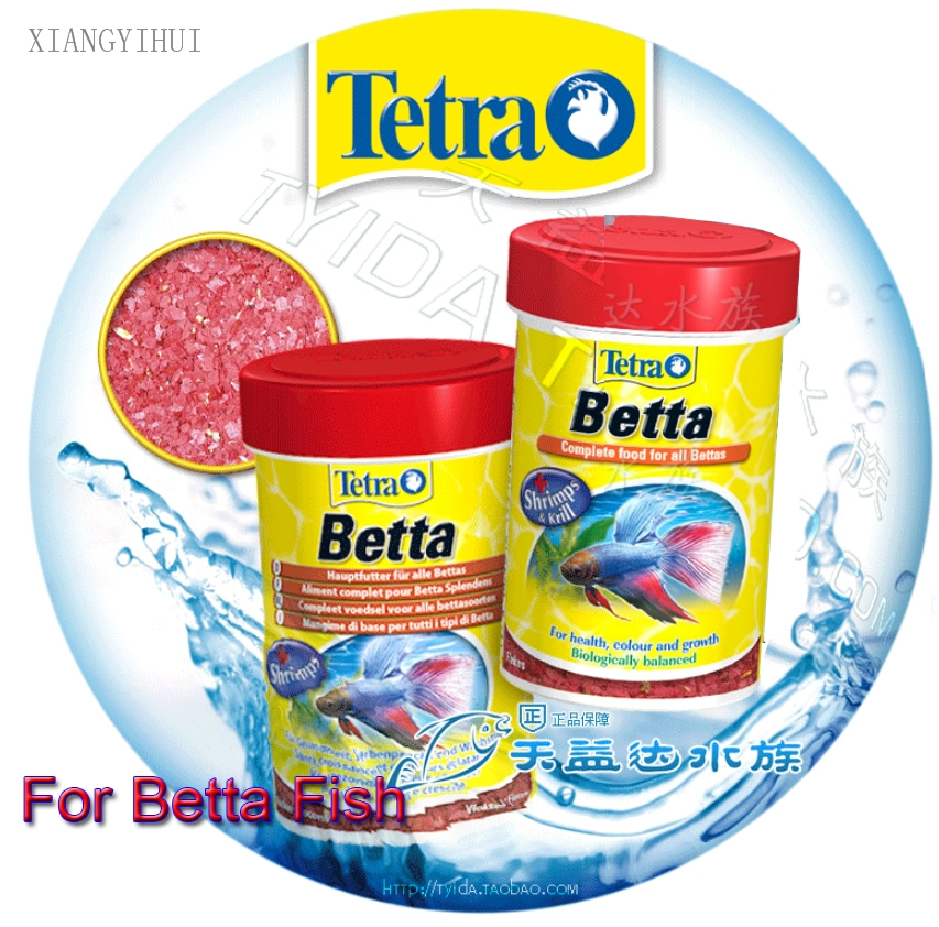 Best betta food – What and how to feed your betta fish ...
