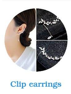earring_01