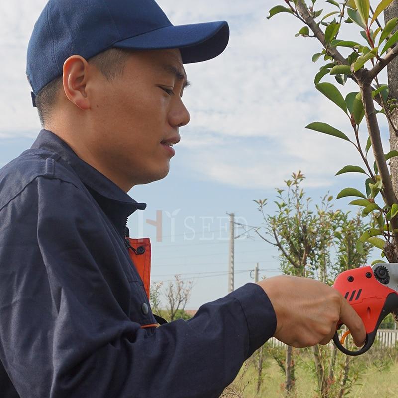 Pruner electric HDP36 cu baterii de litiu CE (livrare reală din - Unelte de gradina - Fotografie 4