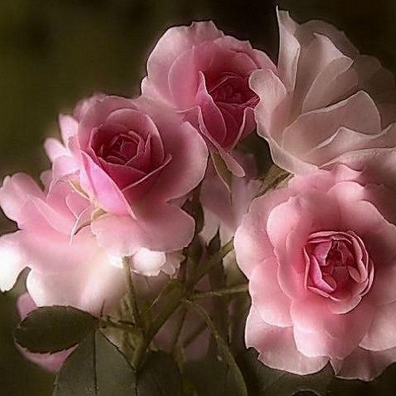 Flores rosas resina completa DIY diamante pintura diamante mosaico ...