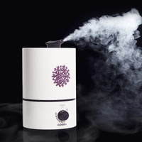 Air Humidifier Fogger Carve Aroma 15 Hours Continuous Working Diffuser For Home 4 L Large Capacity